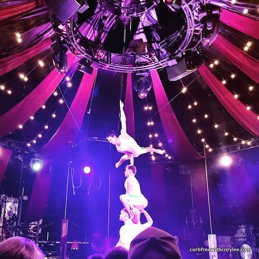 Some of the spectacular performers of Absinthe