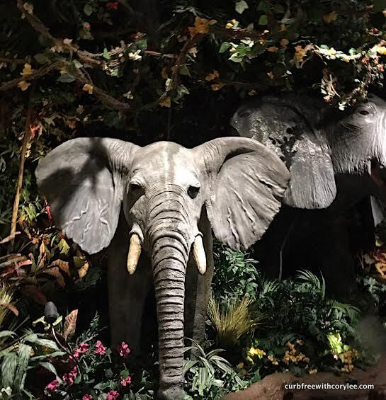 You could have a life-sized elephant by your dining table.