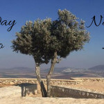 My Wheelchair Accessible Day Trip to Nazareth, Israel