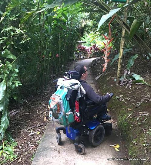 amazon rainforest wheelchair accessible